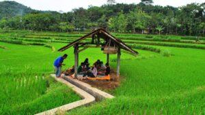 Desa Wisata Tanjung Sleman Yogyakarta