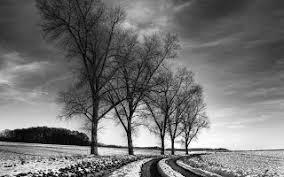 Lukisan Pemandangan hitam dan Putih