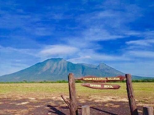 Foto Taman Nasional Jawa Timur Baluran Savana Bekol