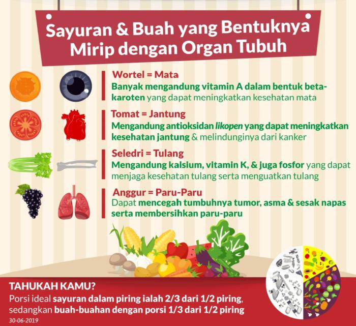 Inilah Sayur & Buah yang Bentuknya Mirip dengan Organ Tubuh Manusia