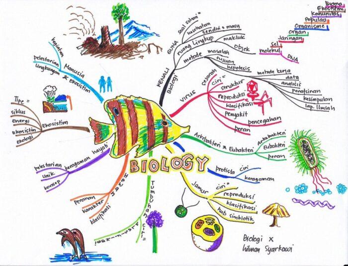 Pengertian dan Cara Membuat Mind Mapping Saat Belajar Beserta Contoh